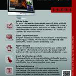 Marketing Agency Flyer Design