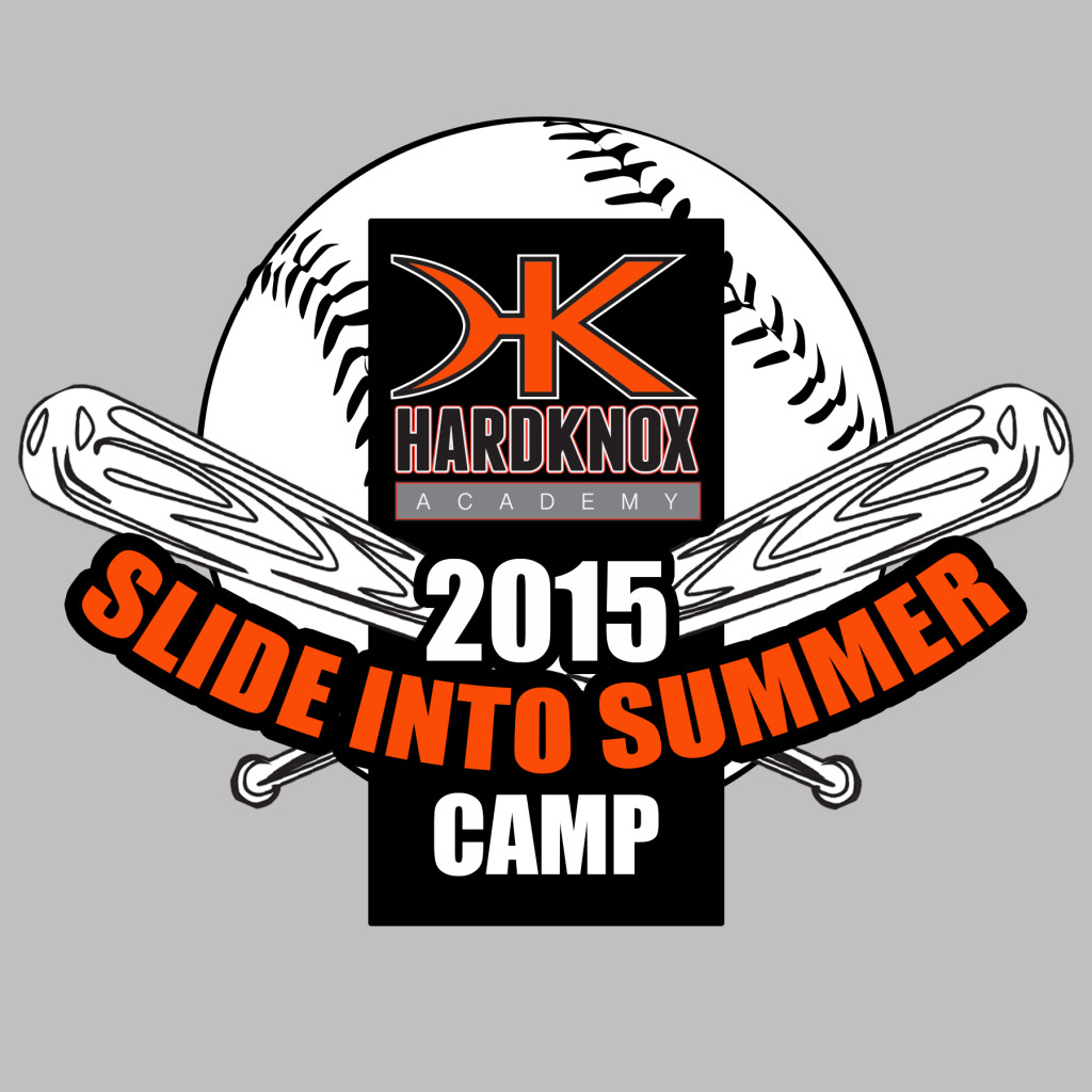 2015 summer camp baseball t-shirt design